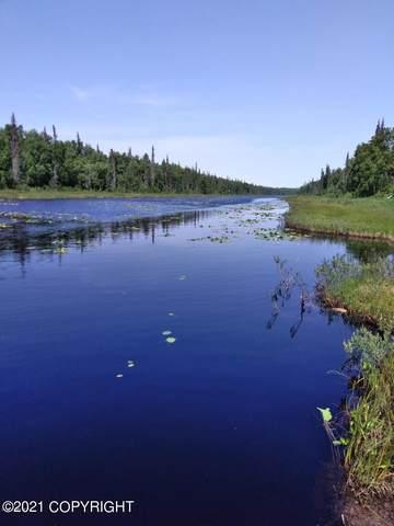 27472 S Aurora Lake Road, Trapper Creek, AK 99683 (MLS #21-10314) :: Wolf Real Estate Professionals