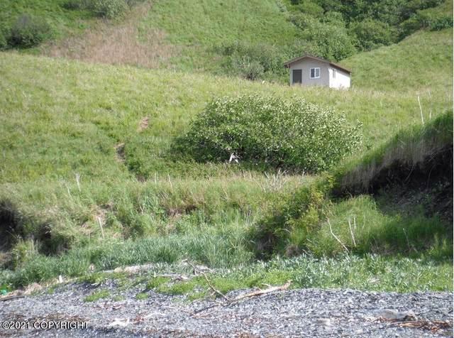 NHN Eagle Harbor, Remote, AK 99615 (MLS #21-10454) :: Alaska Realty Experts