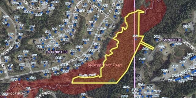 7175 E Timber Way, Wasilla, AK 99645 (MLS #21-10796) :: Synergy Home Team