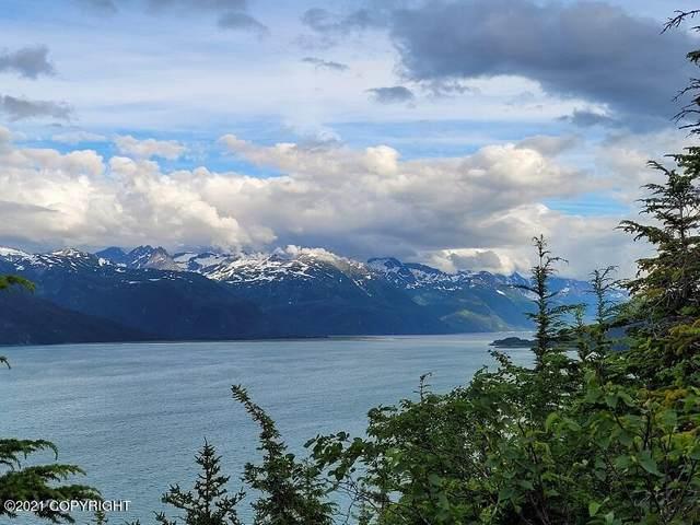 000 Skyline Drive, Haines, AK 99827 (MLS #21-10918) :: RMG Real Estate Network | Keller Williams Realty Alaska Group