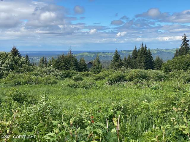 NKA Diamond Ridge Road, Homer, AK 99603 (MLS #21-10977) :: Daves Alaska Homes