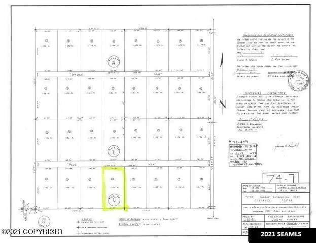 NHN Pine Street, Gustavus, AK 99826 (MLS #21-11124) :: Wolf Real Estate Professionals