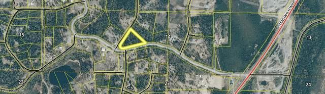 0000 Echo Lake Road, Soldotna, AK 99669 (MLS #21-11194) :: Daves Alaska Homes