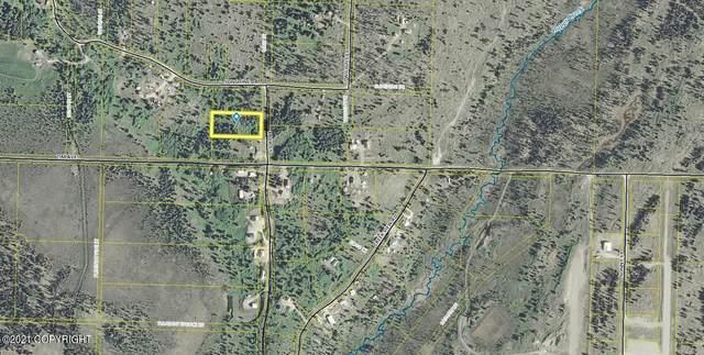Tr 14 Muir Street, Ninilchik, AK 99639 (MLS #21-11217) :: Wolf Real Estate Professionals