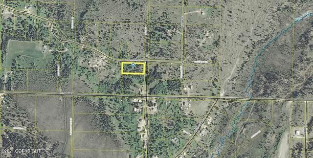 Tr 13 Muir Street, Ninilchik, AK 99639 (MLS #21-11218) :: Wolf Real Estate Professionals