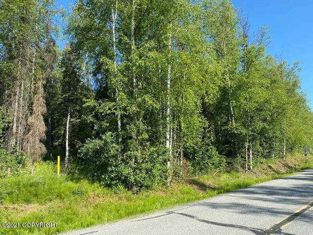 2136 N Meadow Lakes Drive, Wasilla, AK 99623 (MLS #21-11222) :: Wolf Real Estate Professionals