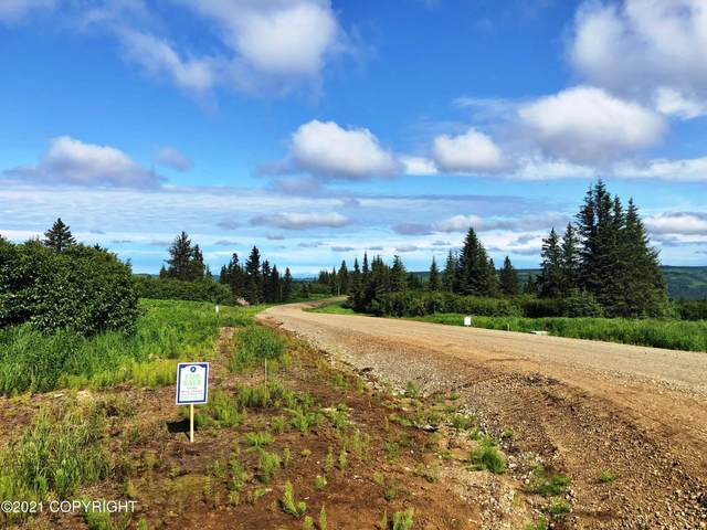 000 Mossberg Drive, Homer, AK 99603 (MLS #21-11251) :: Wolf Real Estate Professionals