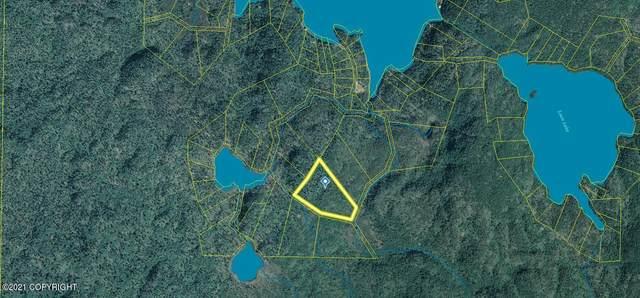 L6 B5 Bear Cove Loop, Homer, AK 99603 (MLS #21-11292) :: Team Dimmick