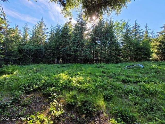 nhn Mc Crae Road, Haines, AK 99827 (MLS #21-11293) :: Wolf Real Estate Professionals