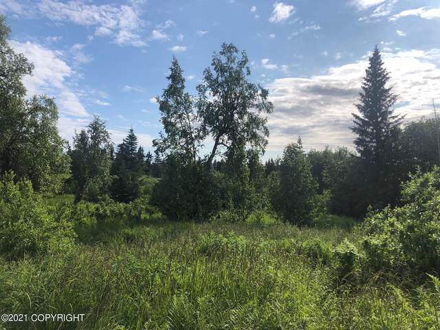 Lot 16 Barn Road, Homer, AK 99603 (MLS #21-11382) :: RMG Real Estate Network | Keller Williams Realty Alaska Group