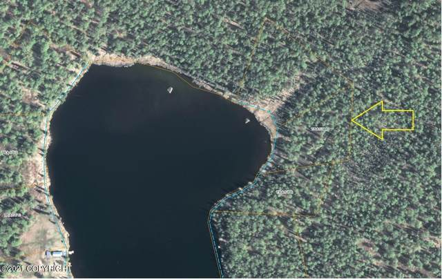 Tract A Lakefront (No Road), Trapper Creek, AK 99683 (MLS #21-11555) :: Wolf Real Estate Professionals