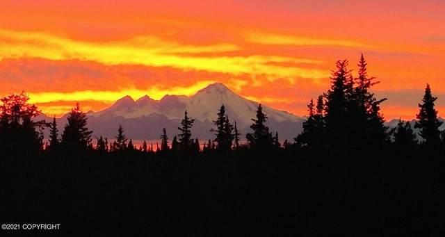 40285 Sterling Highway, Homer, AK 99603 (MLS #21-11564) :: RMG Real Estate Network | Keller Williams Realty Alaska Group