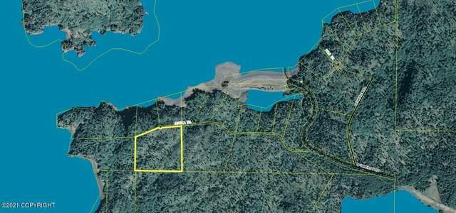 L23 Jessica Trail, Homer, AK 99603 (MLS #21-11800) :: Wolf Real Estate Professionals