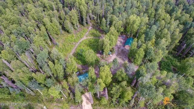 24407 Lucky Shot Trail, Willow, AK 99688 (MLS #21-11814) :: The Adrian Jaime Group | Real Broker LLC