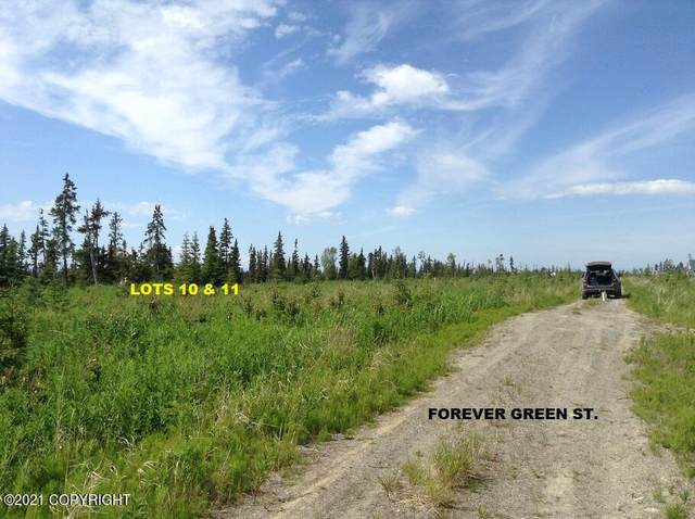 Lot 11 Forever Green Street, Anchor Point, AK 99556 (MLS #21-11837) :: Team Dimmick