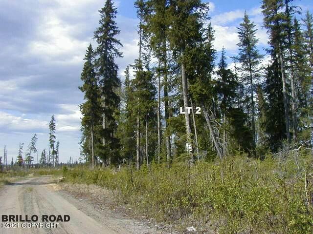 Lt 2 Brillo Road, Anchor Point, AK 99556 (MLS #21-11839) :: Team Dimmick