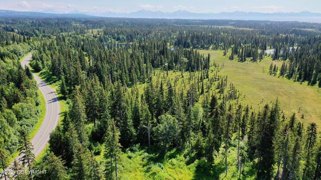 00 Old Sterling Highway, Anchor Point, AK 99556 (MLS #21-11944) :: Wolf Real Estate Professionals
