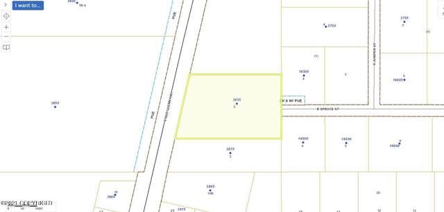 3855 S Old Glenn Highway, Palmer, AK 99645 (MLS #21-11945) :: RMG Real Estate Network | Keller Williams Realty Alaska Group