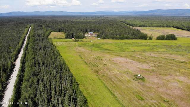 000 New Cummings Road, Delta Junction, AK 99737 (MLS #21-12011) :: Daves Alaska Homes