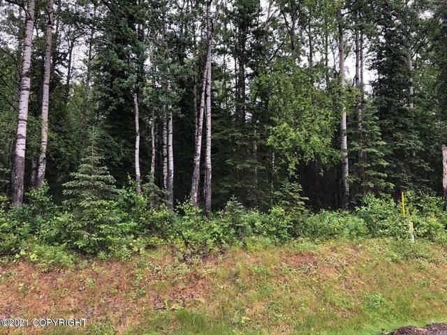5551 N Wildwood Drive, Wasilla, AK 99654 (MLS #21-12059) :: Alaska Realty Experts