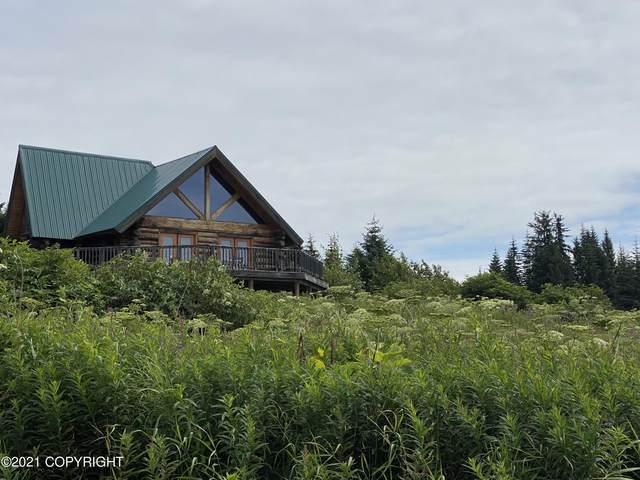 40909 Solstice Drive, Homer, AK 99603 (MLS #21-12143) :: Wolf Real Estate Professionals