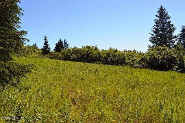 37192 Ilene Drive, Homer, AK 99603 (MLS #21-12231) :: Daves Alaska Homes