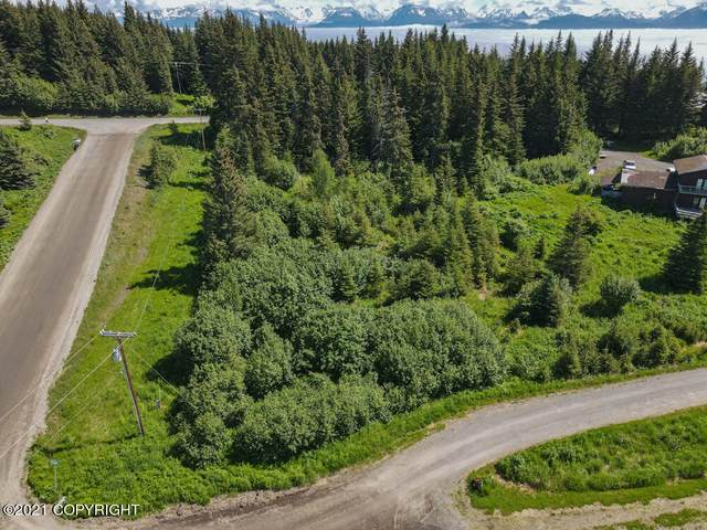 4351 W Hill Road, Homer, AK 99603 (MLS #21-12246) :: Daves Alaska Homes