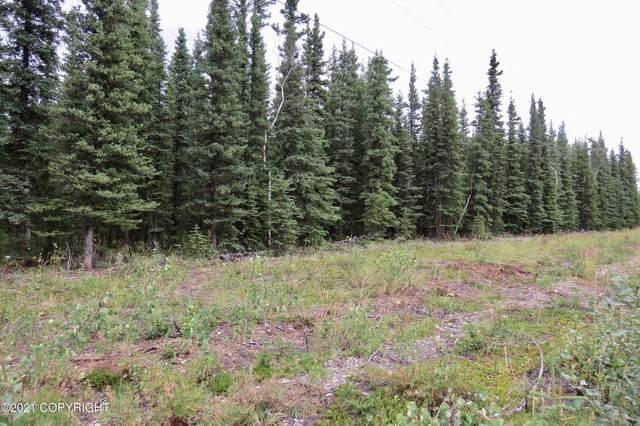 15-3 Kimball Avenue, Tok, AK 99780 (MLS #21-12259) :: Daves Alaska Homes