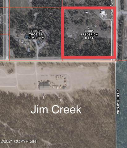 4728 S Caudill Road, Palmer, AK 99645 (MLS #21-12261) :: Wolf Real Estate Professionals
