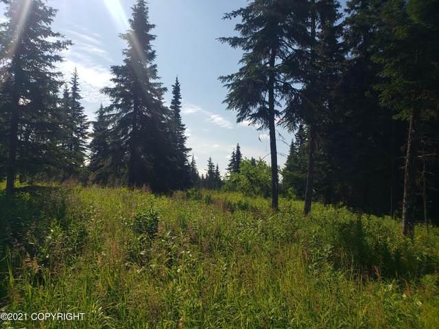 L 13-14 Herman Drive, Ninilchik, AK 99639 (MLS #21-12310) :: Daves Alaska Homes