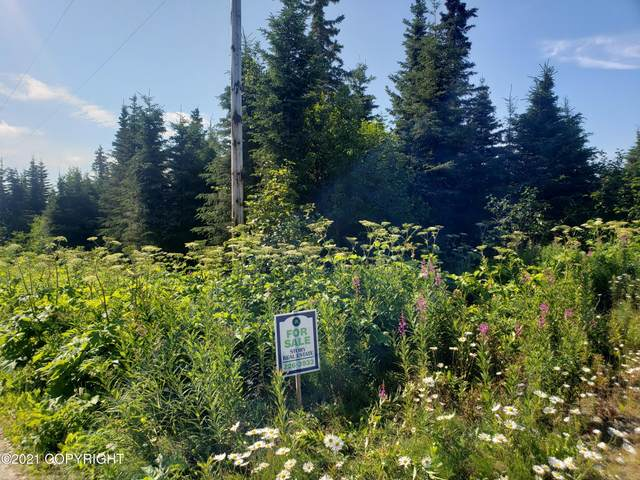 L 15-18 Fellin Lane, Ninilchik, AK 99639 (MLS #21-12313) :: Daves Alaska Homes