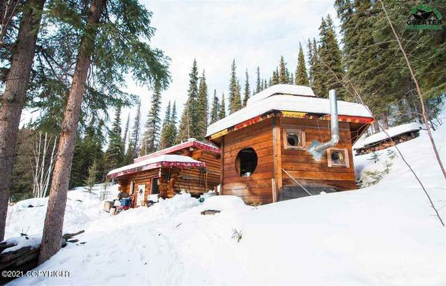 Mi 270 Parks Highway, Healy, AK 99743 (MLS #21-1236) :: Wolf Real Estate Professionals