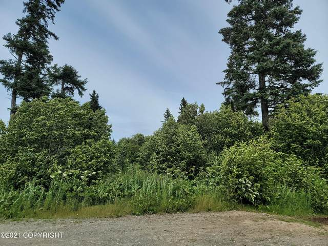 L10 Valleyside Avenue, Anchor Point, AK 99556 (MLS #21-12366) :: Berkshire Hathaway Home Services Alaska Realty Palmer Office