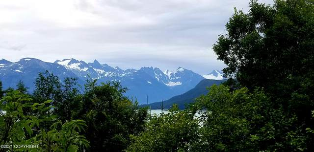 nhn Haven Court, Haines, AK 99827 (MLS #21-12527) :: Wolf Real Estate Professionals