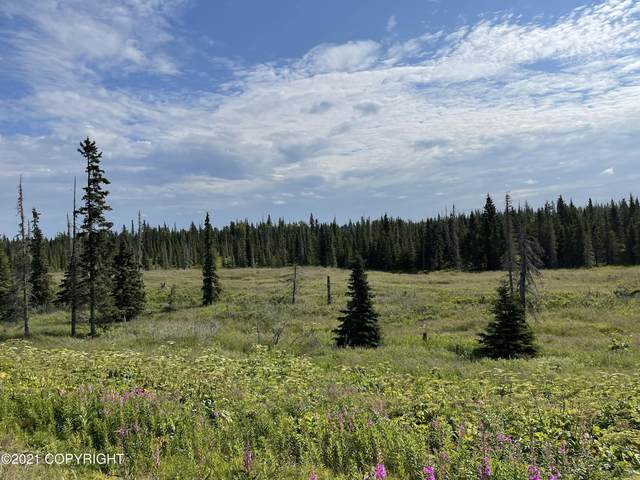 L19 Sterling Highway, Ninilchik, AK 99556 (MLS #21-12637) :: Wolf Real Estate Professionals