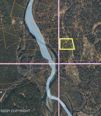 Tr B No Road, Talkeetna, AK 99676 (MLS #21-13060) :: Daves Alaska Homes