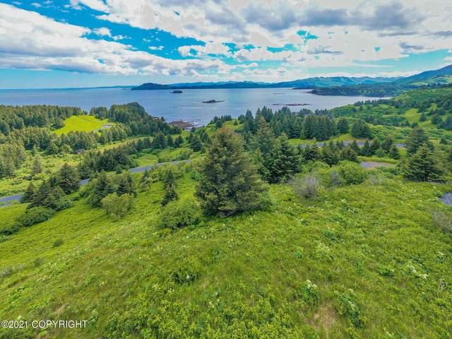 5979 Cliff Point Road, Kodiak, AK 99615 (MLS #21-13232) :: Wolf Real Estate Professionals