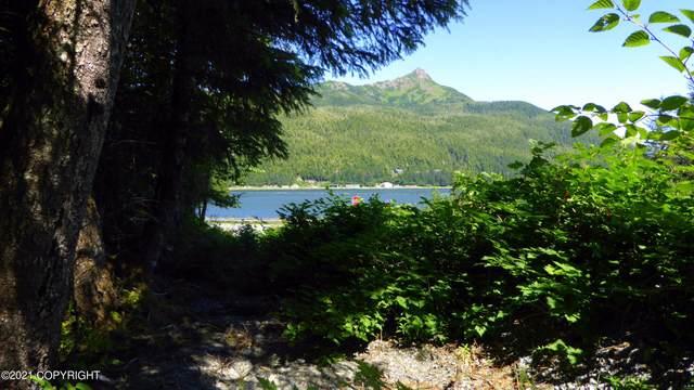 200 Highland Drive, Cordova, AK 99574 (MLS #21-13273) :: Wolf Real Estate Professionals