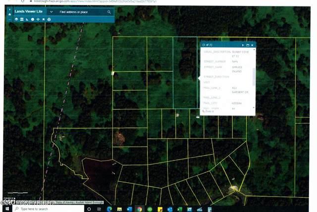 L21 Sunny Cove, Kodiak, AK 99615 (MLS #21-13623) :: Wolf Real Estate Professionals