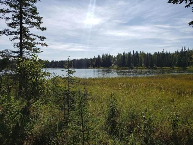 24519 Yukon Road, Kasilof, AK 99610 (MLS #21-137) :: Wolf Real Estate Professionals