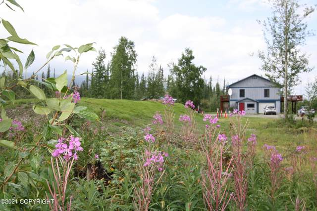 6 Acre Portion Of 1327.6 Alaska Hwy, Tok, AK 99780 (MLS #21-13704) :: Wolf Real Estate Professionals