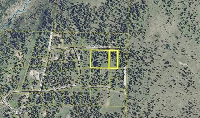 65095 Forrest Park Avenue, Ninilchik, AK 99639 (MLS #21-13765) :: Wolf Real Estate Professionals