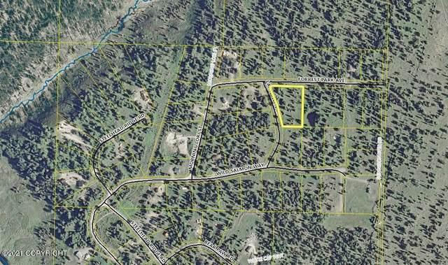 L28 Forrest Park Avenue, Ninilchik, AK 99639 (MLS #21-13766) :: Wolf Real Estate Professionals