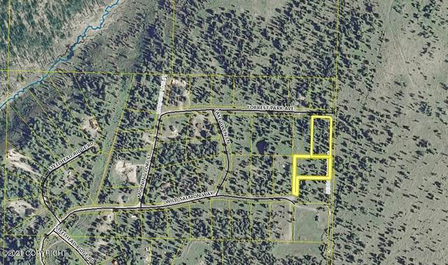 L31 & L24 Forrest Park Avenue, Ninilchik, AK 99639 (MLS #21-13768) :: Wolf Real Estate Professionals