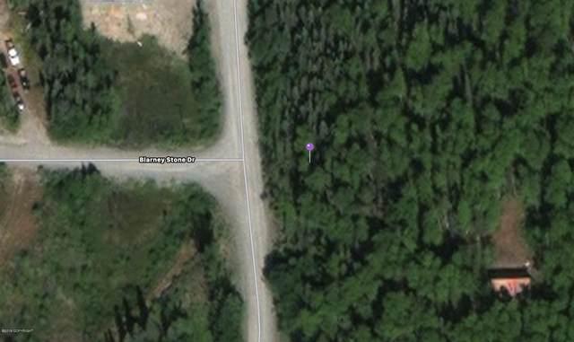 7469 S Burma Road, Big Lake, AK 99654 (MLS #21-1377) :: RMG Real Estate Network | Keller Williams Realty Alaska Group