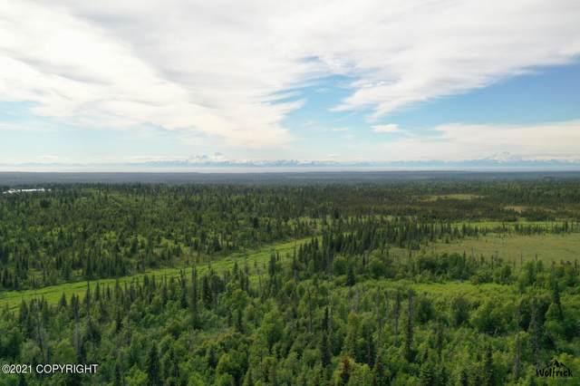 C28-C32P Alaskan Wildwood Ranch(R), Anchor Point, AK 99556 (MLS #21-13828) :: Wolf Real Estate Professionals