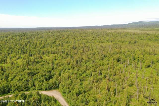 C29-31P Alaskan Wildwood Ranch(R), Anchor Point, AK 99556 (MLS #21-13831) :: Wolf Real Estate Professionals
