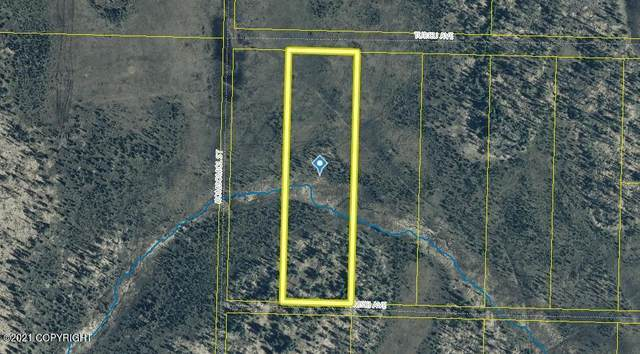 Tr10 Tomski Avenue, Anchor Point, AK 99556 (MLS #21-13914) :: Wolf Real Estate Professionals