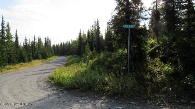 21760 Collins Drive, Kasilof, AK 99610 (MLS #21-14012) :: Wolf Real Estate Professionals