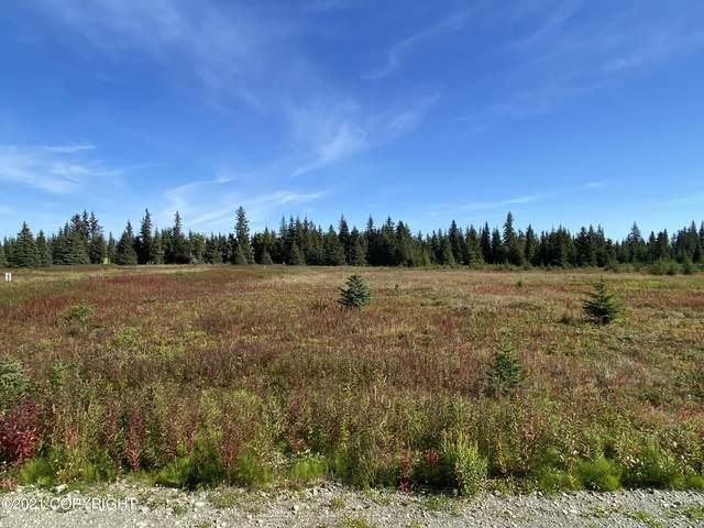 72668 Grumman Avenue, Anchor Point, AK 99556 (MLS #21-14035) :: Wolf Real Estate Professionals